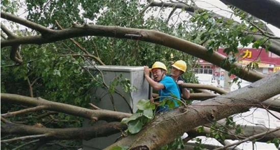 """不惧""""山竹"""" 中兴通讯台风背后的通讯保障"""